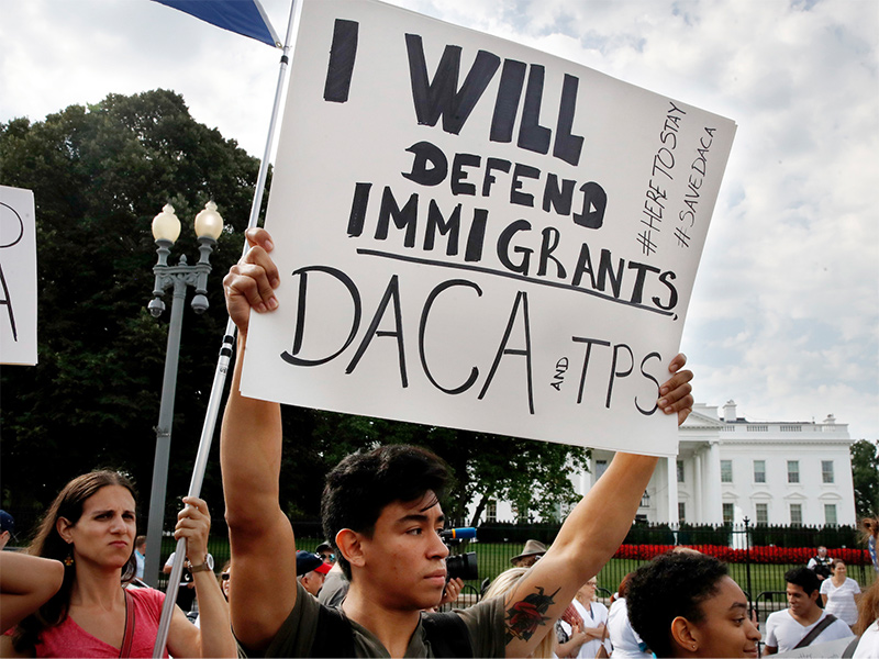 DACA. What options do you have?